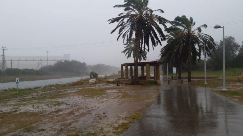 גשם בפארק לכיש. צילום: דור גפני