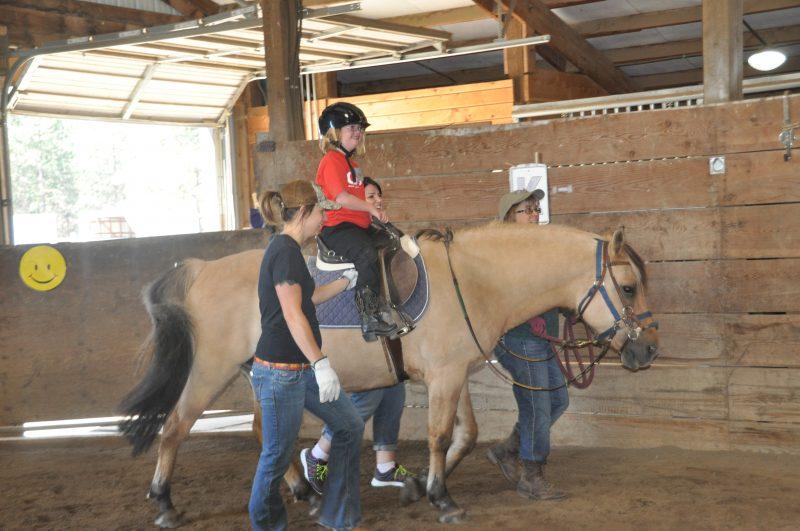 אילוסטרציה שיעור רכיבה על סוס