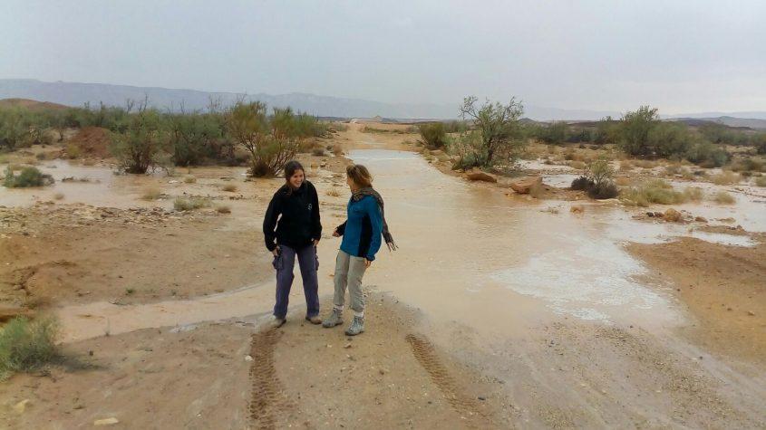 זרימה בנחל רמון, צילום: רשות הטבע והגנים צור נצר 25 באפריל