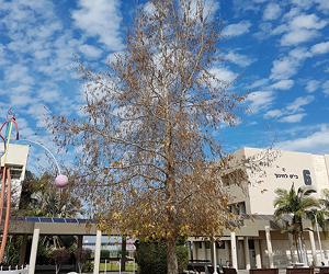 המכללה האקדמית אחוה. צילום: דגנית צור