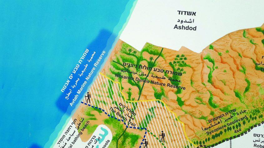 מפה של רשות הטבע והגנים - שמורת חולות ניצנים ודרום העיר אשדוד. צילום: דור גפני
