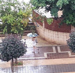 """אישה עם מטריה הבוקר באזור י""""ב. צילום: דור גפני"""