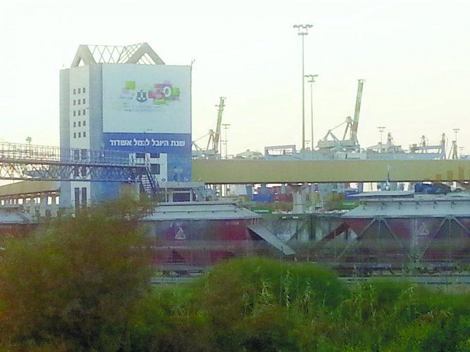 רכבת משא בנמל אשדוד. צילום: דור גפני