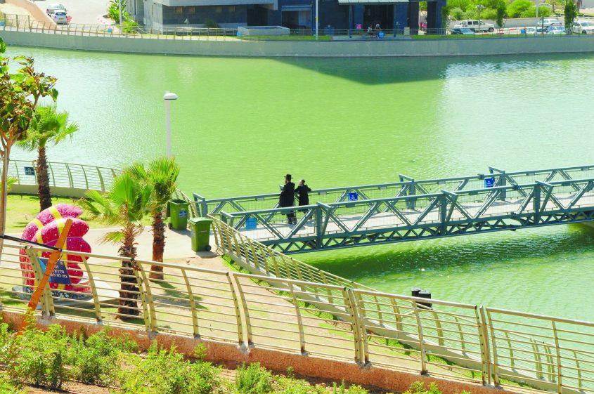 פארק אשדוד-ים. צילום: אורי קריספין