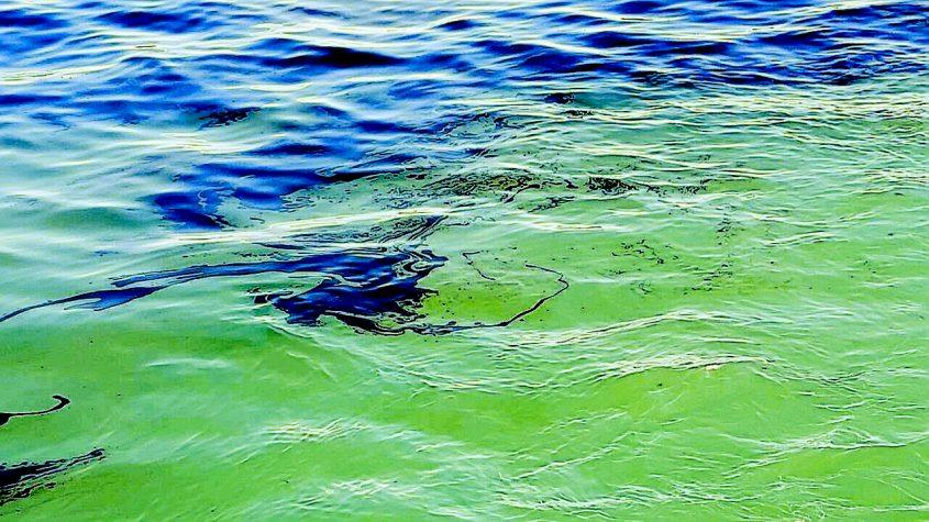 כתם השמן שהתגלה במי הים מול חוף חברת החשמל באשדוד ינואר 2017. צילום: המשרד להגנת הסביבה