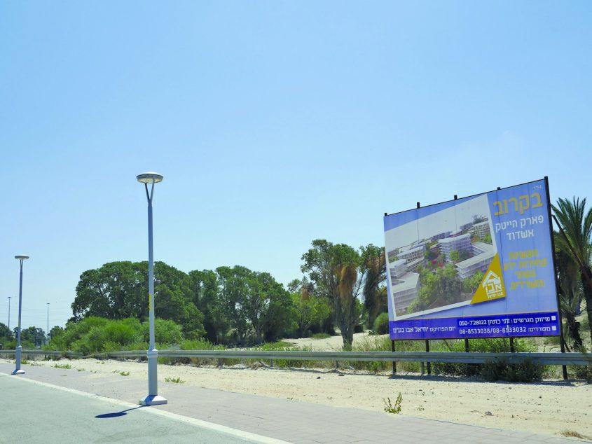 כאן יוקם פארק ההייטק של אשדוד. צילום: פבל