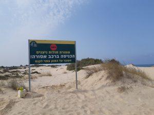 שלט בכניסה לשמורה -הכניסה ברכב אסורה, צילום: ברק שחם