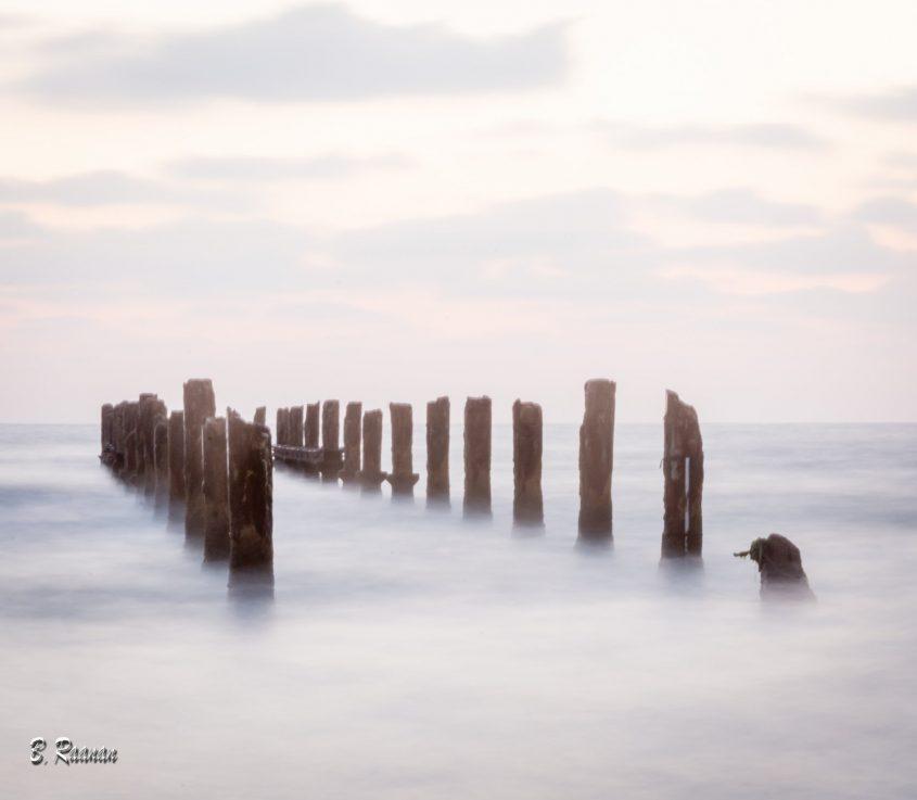 צילום: בועז רענן