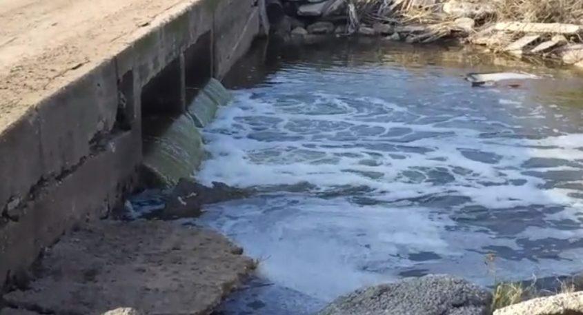 איזה דרעק. זרימה בנחל לכיש ליד ניר גלים: זה לא מים נקיים. צילום: שמוליק פימונטל