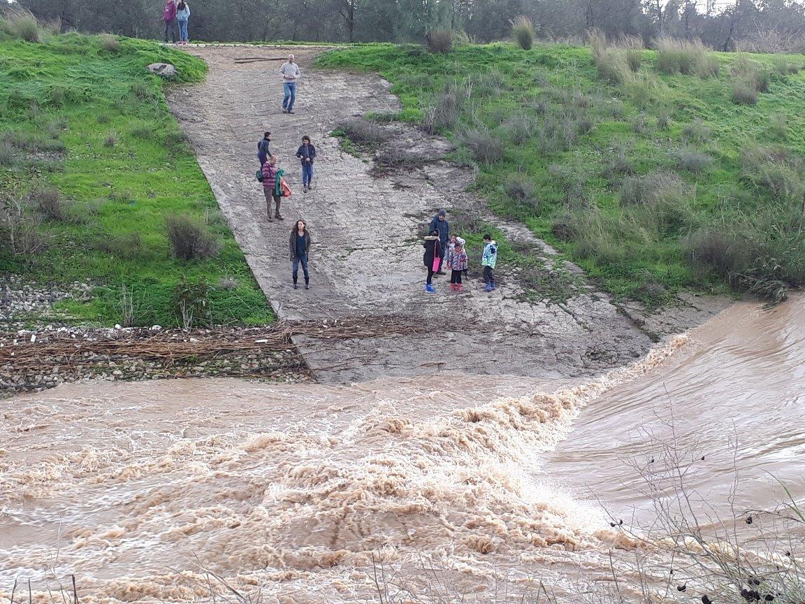 מטיילים הגיעו במהלך השבת לצפות בשיטפון בנחל לכיש. צילום: דור גפני