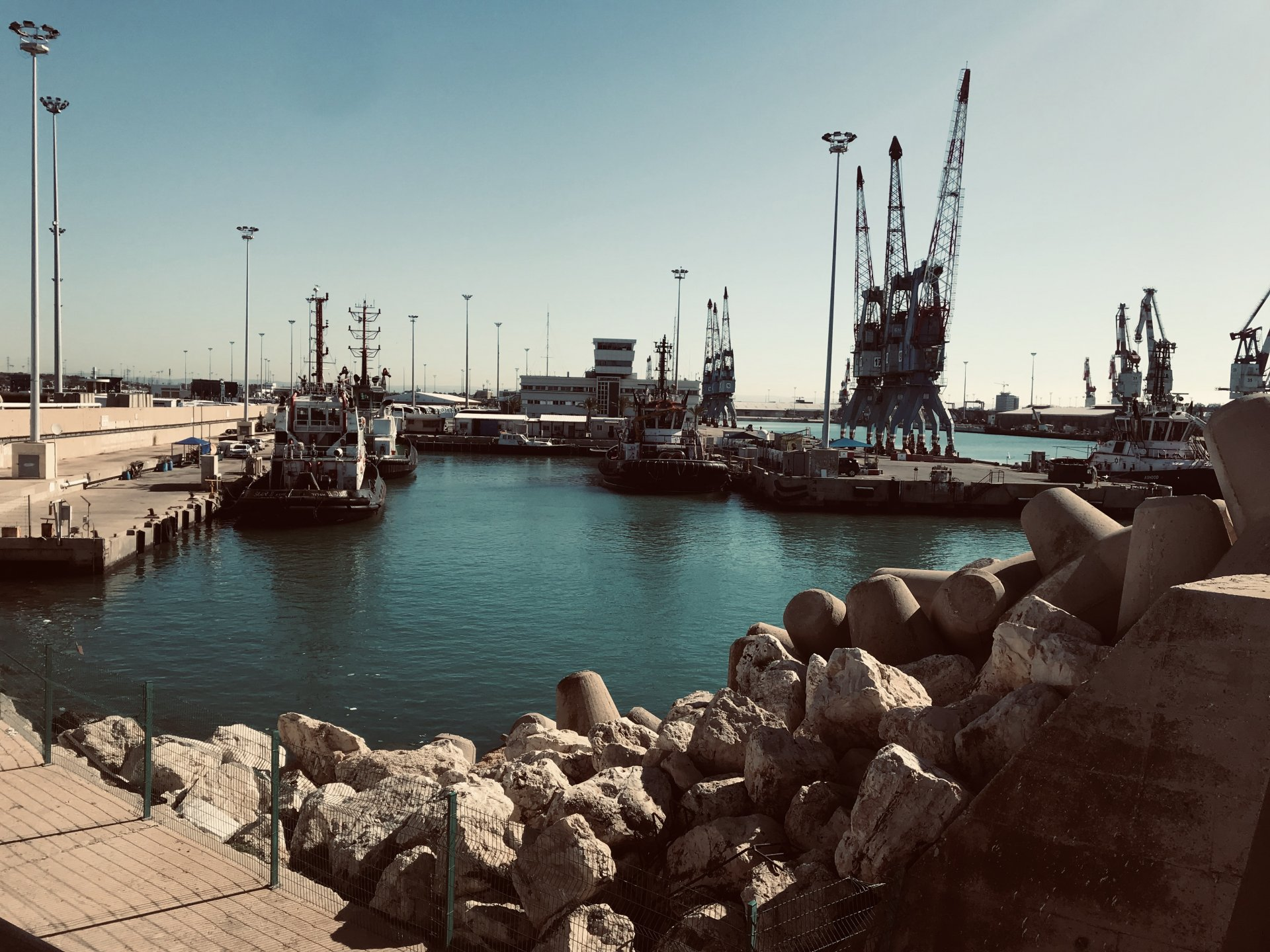 נמל אשדוד צילום: חלי דהן-פוני
