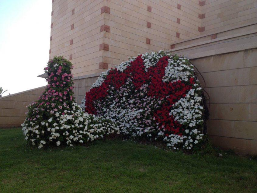 """ה""""טווס"""" עטוף בפרחי וינקה ליד בניין העירייה. צילום: עיריית אשדוד"""