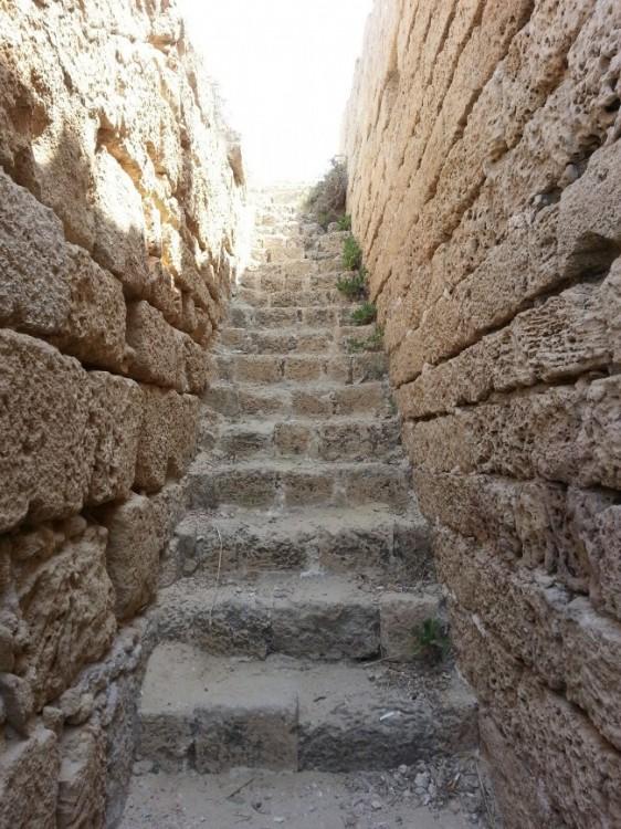 מדרגות לגן עדן צילום: יעקב יופנט