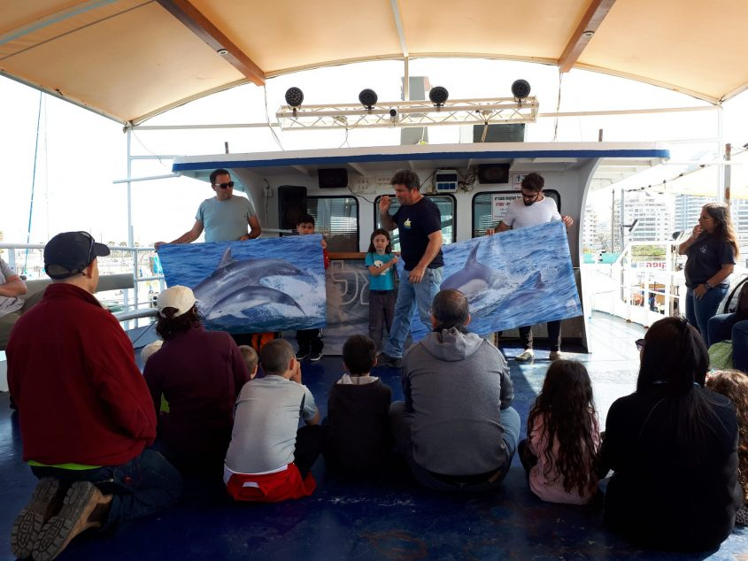 """מה ההבדלים בין הדולפין המצוי (מימין) לדולפינן? ד""""ר שיינין מסביר למשתתפים. צילום: דור גפני"""