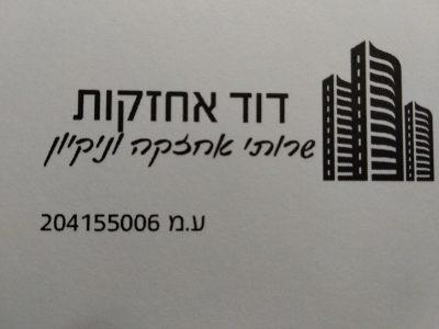 לוגו דוד אחזקות