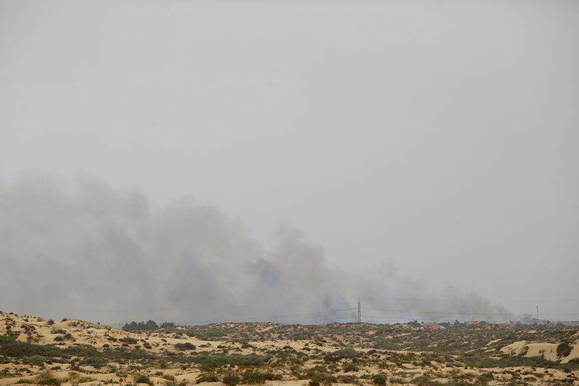 שריפת שדה חיטה ענקית סמוך למושב בית עזרא. צילום: פבל