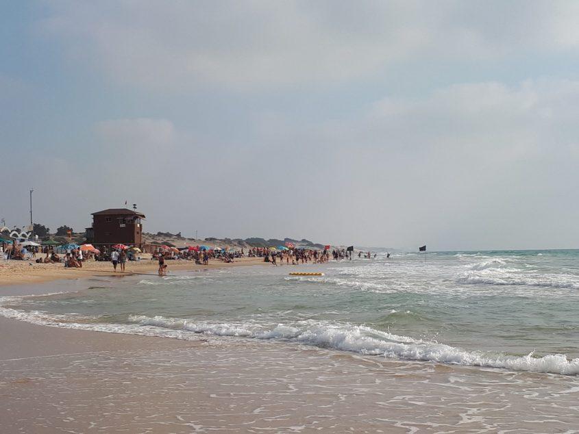 """חוף הריביירה/ באר שבע/ ט""""ו: אין מתרחצים במים בגלל המדוזות. צילום: דור גפני"""