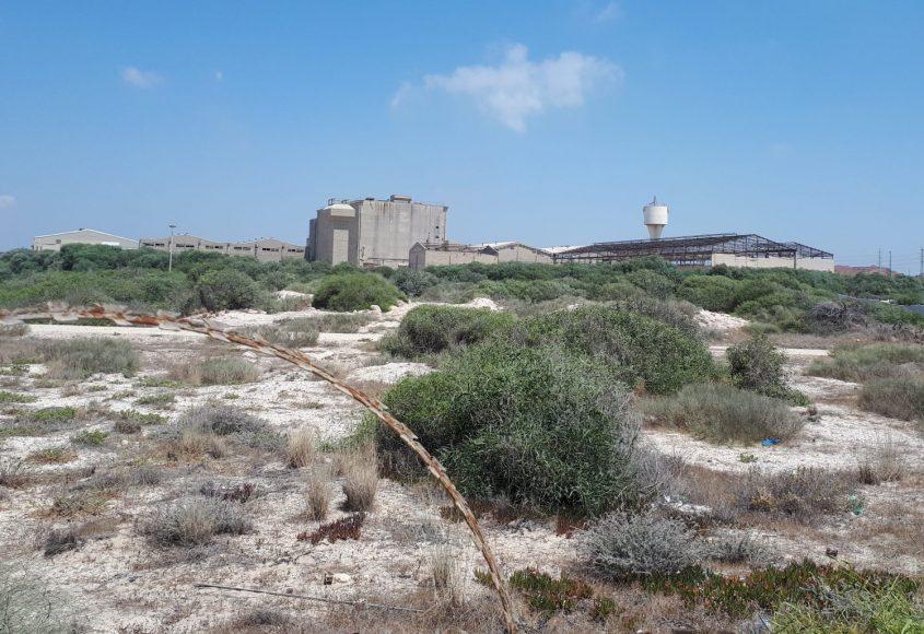 אתר רוגוזין - מבט ממערב. צילום: דור גפני
