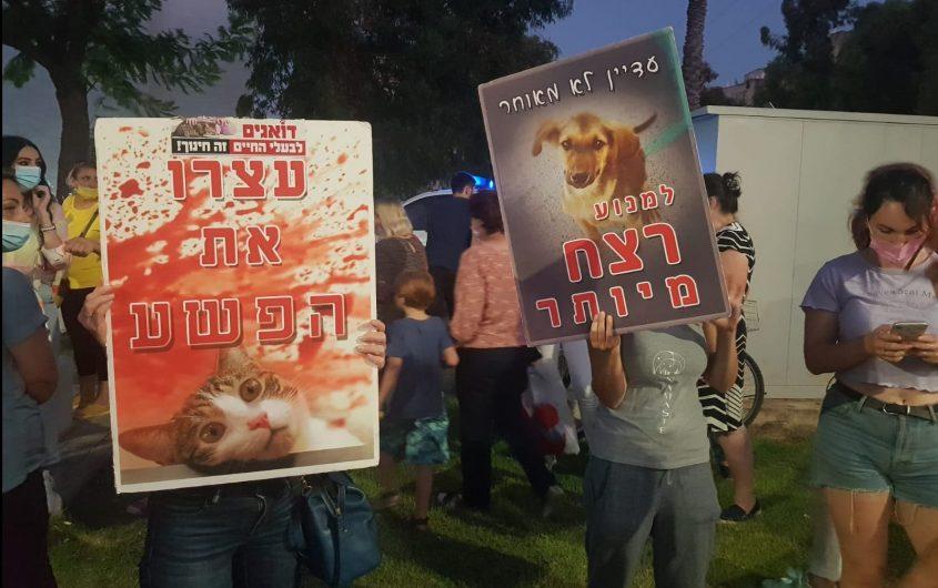 משמיעים את קולם של בעלי החיים: המפגינים באשדוד הערב. צילום: אסף ליבוביץ'