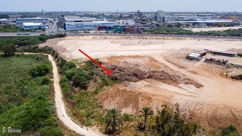 אזור פריחת הנרקיסים 19 ביולי 2020. האתר נהרס. צילום: בועז רענן