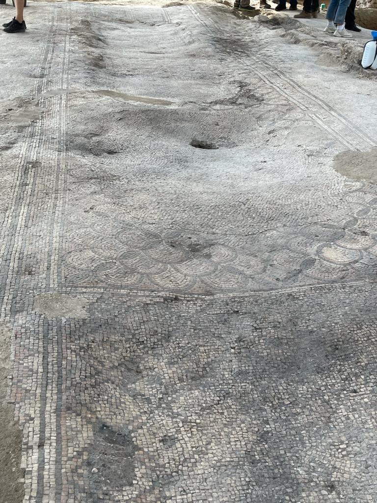 רצפת הפסיפס באתר החפירות. צילום: תיירות אשדוד