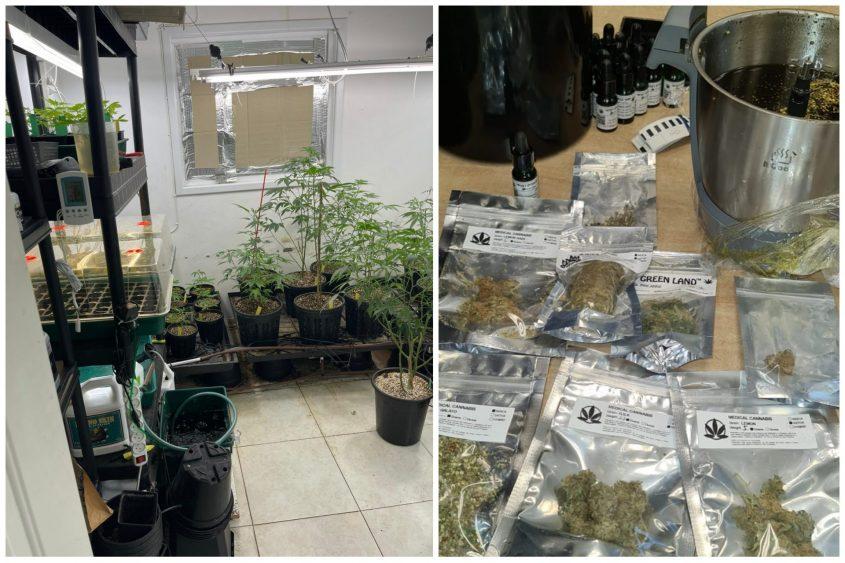הסמים שנמצאו בבית. גם יבשים וגם שמן. צילום: דוברות המשטרה