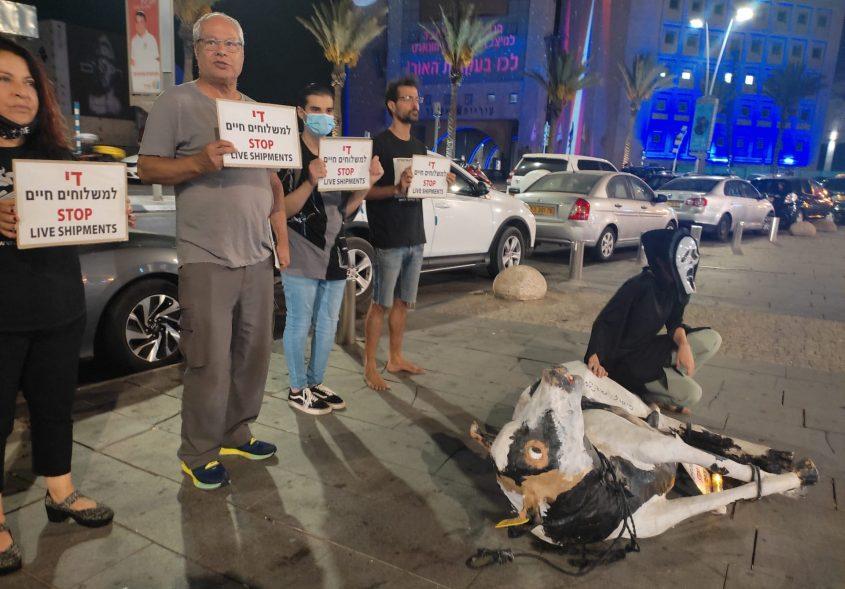 המחאה באשדוד. צילום: ישראל נגד משלוחים חיים
